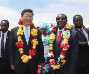 图片新闻:习近平访问津巴布韦掠影