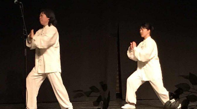 视频:2017北欧之春国际和平文化节 太极表演 陈雪霏, 黄于烨。