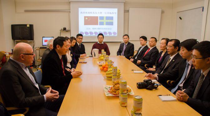 今日头条:中国驻瑞典大使桂从友出席瑞典安徽科技商业协会座谈会