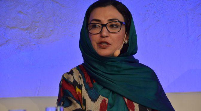 视频:阿富汗副外长拉兹在斯德哥尔摩和平与发展论坛上的精彩表现