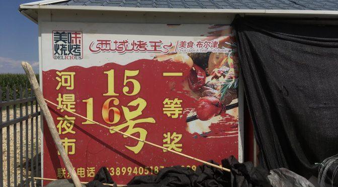 Utländska journalister besöker Xinjiang-serien (13) – Burqins jordbruk och frukt är också attraktion för turister