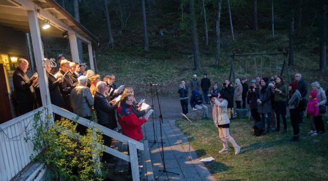 为什么今年的瑞典篝火节比较冷清?