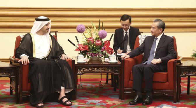阿联酋外长:中国在去极端化方面的政策是非常成功的