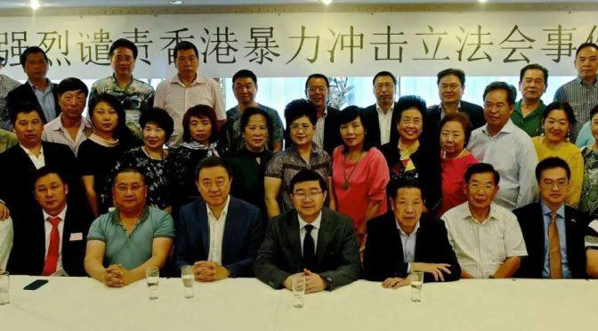 荷兰华人华侨社团集会坚决支持中央政府坚决支持香港特区政府强烈谴责违法暴力行为
