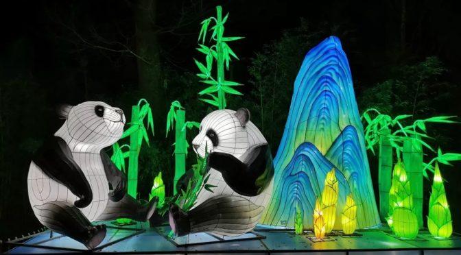 """世界第一熊猫馆""""再创辉煌 """"中国彩灯节""""靓丽荷兰"""
