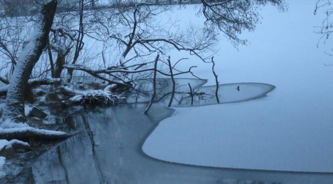 图片新闻:斯德哥尔摩的雪景