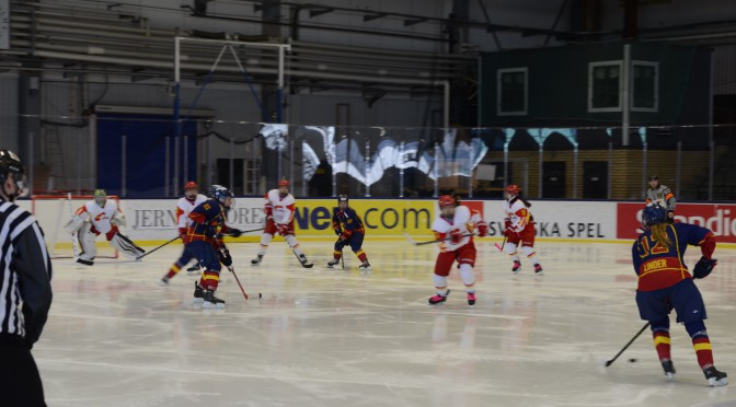 中国女子冰球队圆满结束瑞典热身赛奔赴世锦赛
