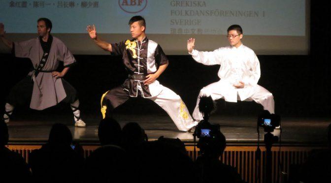 """视频:""""浓情端午""""最炫民族风文艺演出(五)太极武术"""