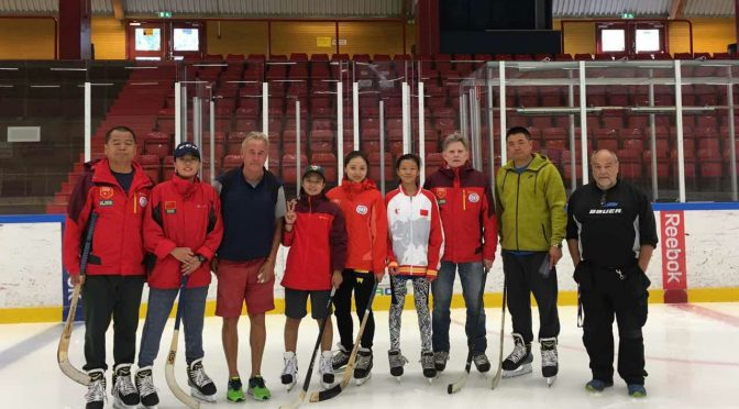 Progress made in Bandy and Hockey exchange between China and Sweden