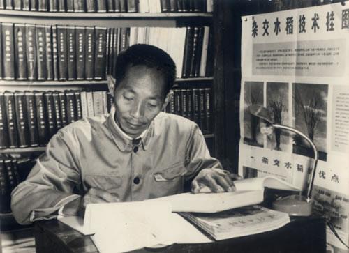 Profile: Yuan Longping, Father of Hybrid Rice