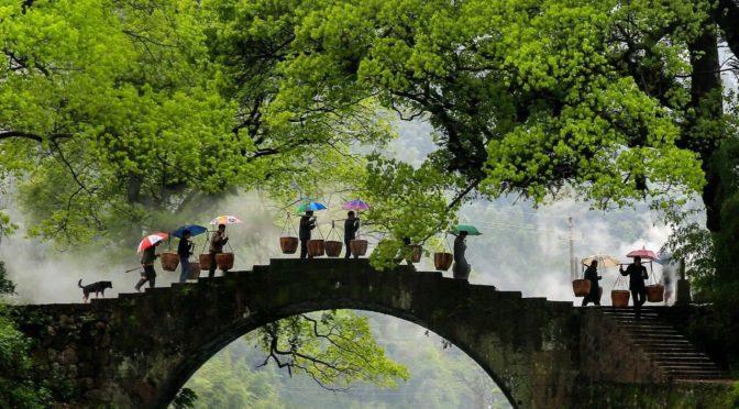 2021天涯共此时-中秋节:青山绿水 风雅浙江 Zhejiang's Traditional Culture